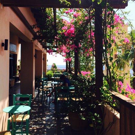 Candia Park Village : Cafe
