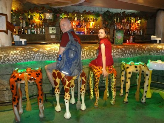 Funky Bar Stools Picture Of Rainforest Cafe London