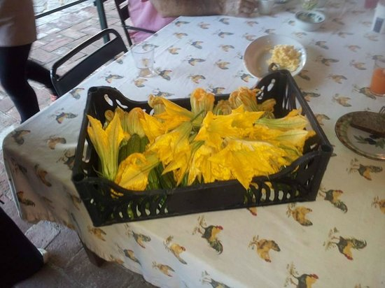 Toscana Saporita Cooking School : Fresh picked zucchini blossoms for today's lunch