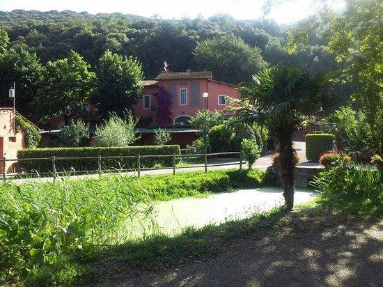 Toscana Saporita Cooking School : More of your beautiful villa.