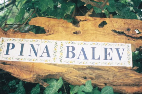 Pina Balev: Entrance sign