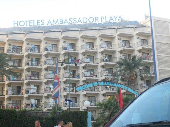 Ambassador Playa 2 Picture Of Hotel Ambassador Playa I Ii