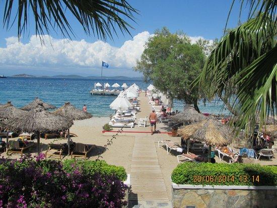 Voyage Torba: View of pontoon from main pool