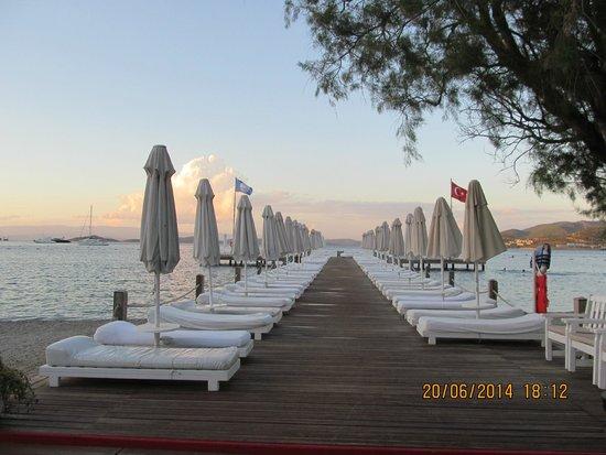 Voyage Torba: The pontoon at sunset