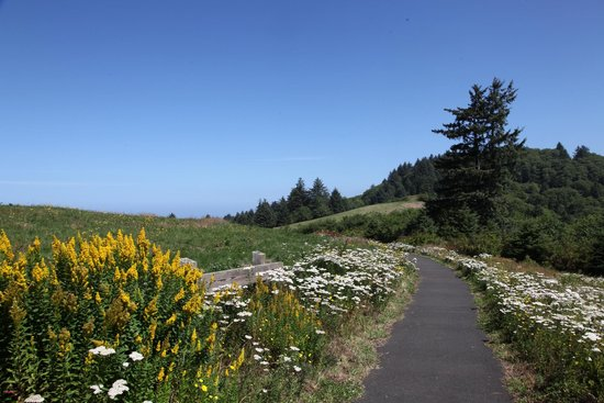 Pacific City, OR: Pacific View Trail