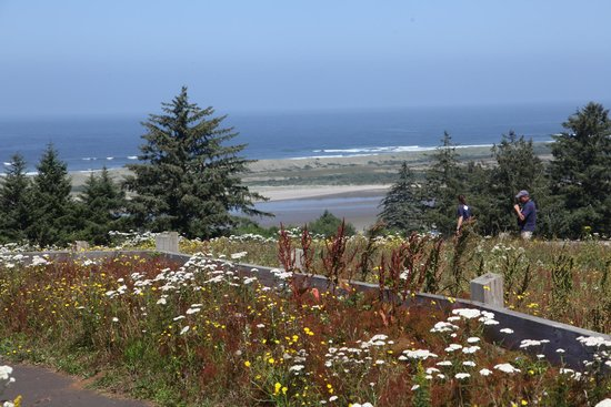 Nestucca Bay National Wildlife Refuge: The view from the Pacific View Trail
