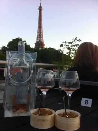 Le VIP Paris Yacht Hotel : Vue sur Tour Eiffel