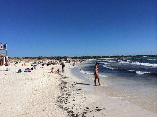 playa gay es trenc mallorca