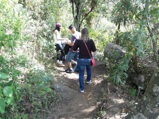 Pedra Redonda: descendo a trilha