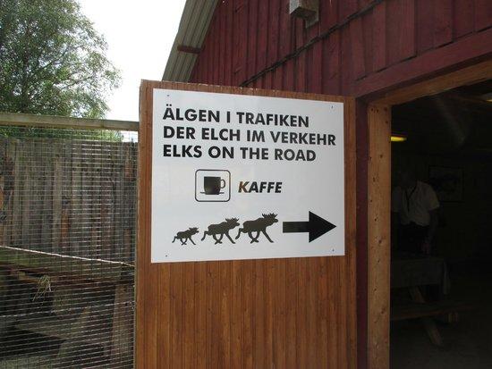 Grönåsens Älgpark : Gronasens Algpark , Kosta