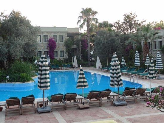 Hotel Zeytinada: la piscine