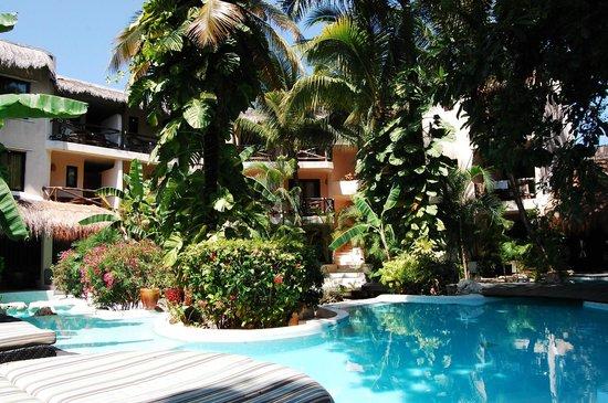 La Tortuga Hotel & Spa: Cuando mucho, coincidimos con una pareja mas en alberca