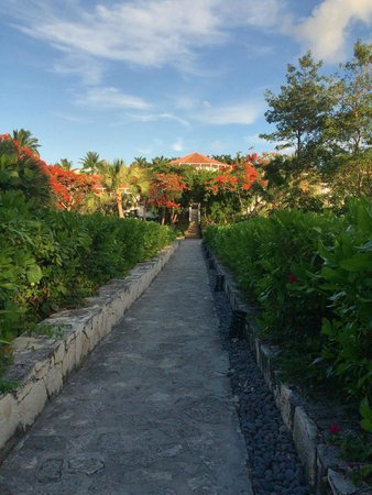 Parrot Cay by COMO: Walkway from the beach to some of the rooms