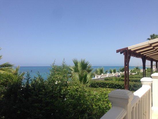 Sentido Flora Garden : hotel grounds