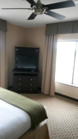 Holiday Inn Express Hotel & Suites Opelika Auburn: Bedroom