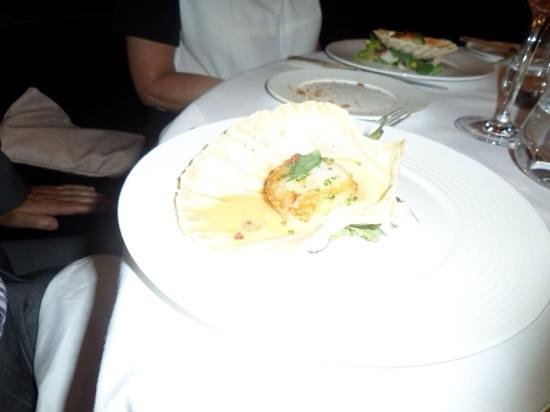 The Savoy Grill : scallops