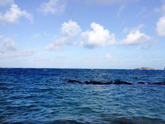 Coconut Bay Beach Resort & Spa: The beach view