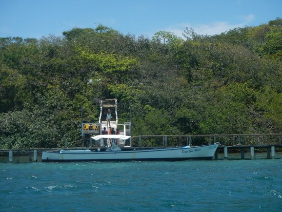 Arch's Iguana  and Marine Park: The front of the Iguana farm from the water