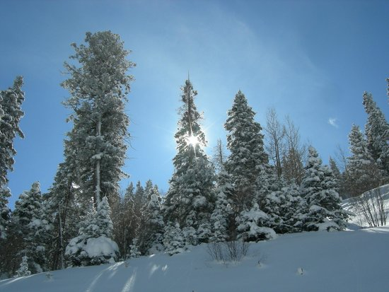 Taos Ski Valley: picture perfect