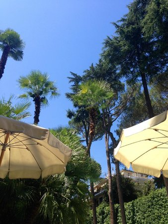 Aldrovandi Villa Borghese: depuis le bar d'été