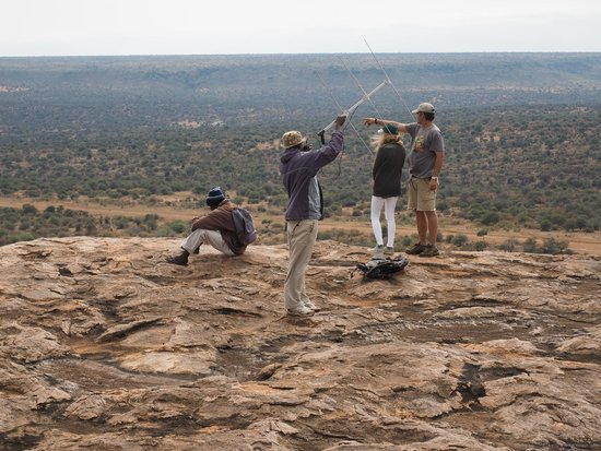 Laikipia Wilderness Camp : searching for the dogs and admiring the views