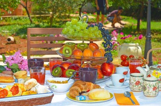 Bed and Breakfast La Magnolia: Particolare colazione in giardino