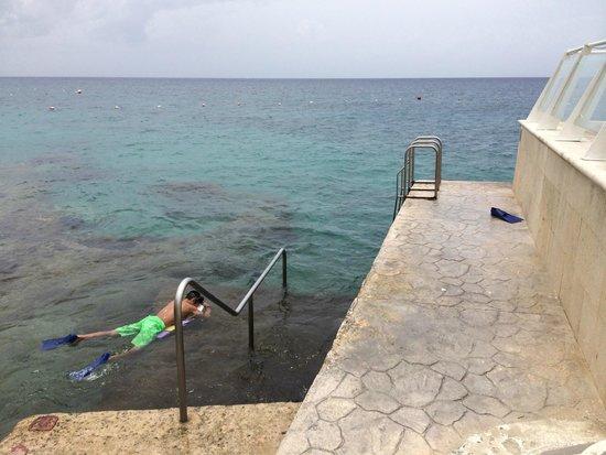 Playacar Palace: Cozumel Palace snorkel
