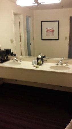 Washington Plaza Hotel: Double sinks