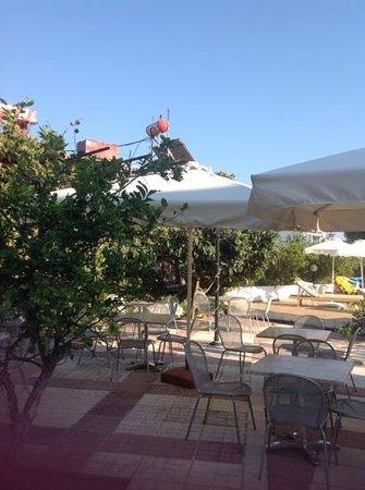 Hotel Korali: pool terrace