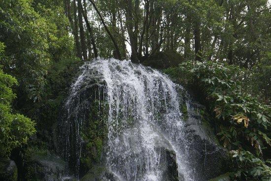 Parque Natural da Ribeira dos Caldeiroes: Parque Natural Ribeira dos Caldeirões