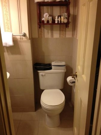 Historic Inns of Annapolis: Extremely small bathroom with no storage space
