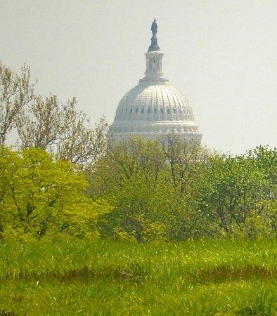 Magnificent Capitol Hill