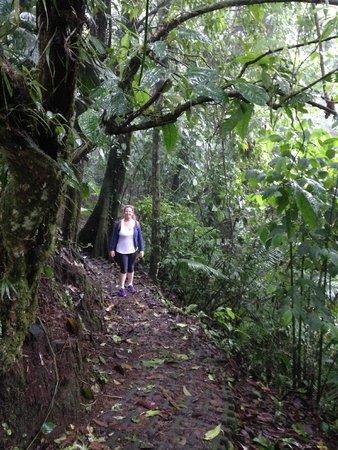 Hotel Montaña de Fuego Resort & Spa: A trilha (sendero) até o Rio