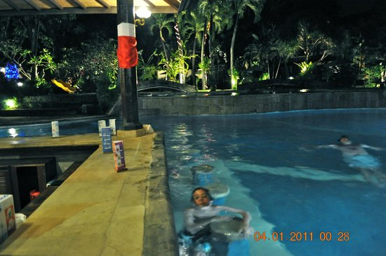 Hotel Vila Lumbung : Pool Bar