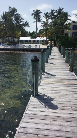 Pines and Palms Resort : The dock...