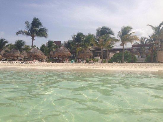 Excellence Playa Mujeres: Vista da praia do hotel de dentro da agua