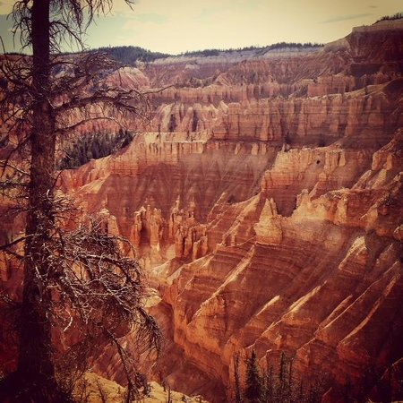 Cedar Breaks National Monument: Cedar Breaks