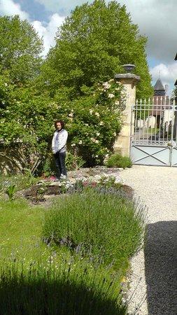 Gye-sur-Seine, Francia: Driveway of lavender