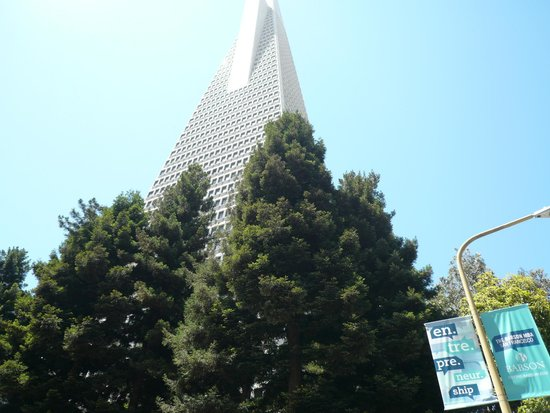 Hilton San Francisco Financial District: TransAmerica Building a block away