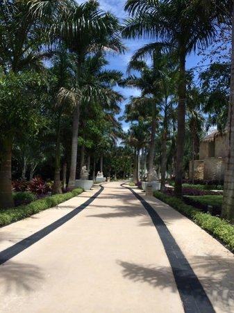 Grand Riviera Princess All Suites Resort & Spa: Main Walk through the resort