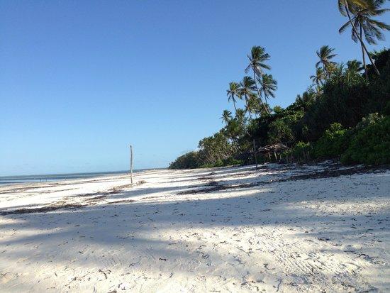 Matemwe Bandas Boutique Hotel, Zanzibar: The bungalows are directly on the beach.