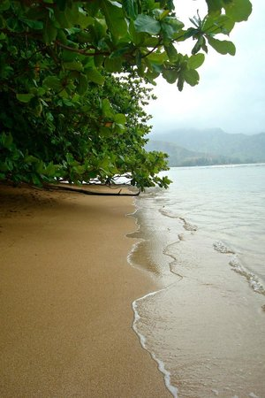 St. Regis Princeville Resort: Walking on the beach near hotel