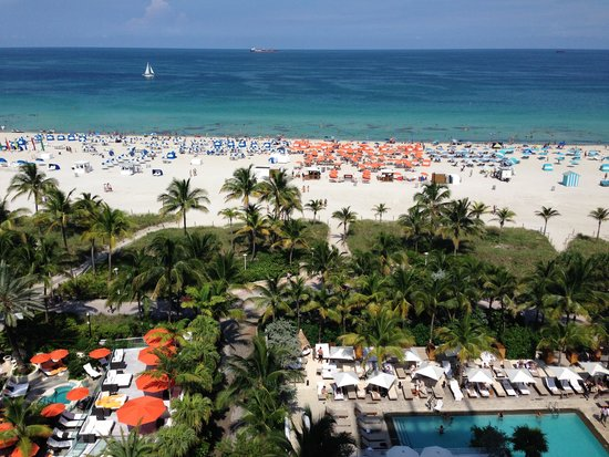 Royal Palm South Beach Miami, A Tribute Portfolio Resort : View from Ocean Front Room