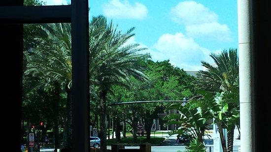 Hyatt Regency Orlando: Entrada