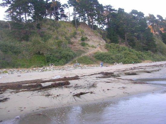 New Brighton State Beach : One of a few walkways along the beach