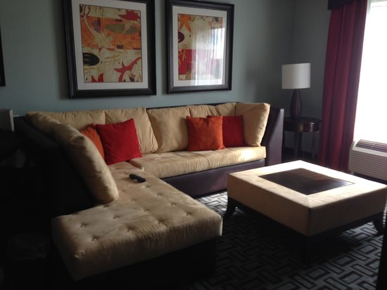 Hilton Garden Inn Atlanta South-McDonough: Wraparound sofa bed