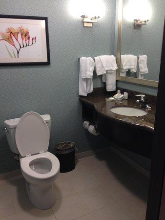 Hilton Garden Inn Atlanta South-McDonough: Half bathroom