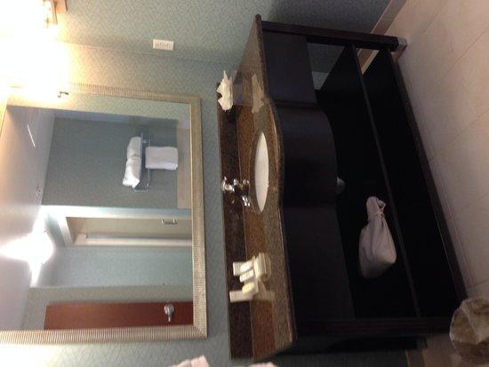 Hilton Garden Inn Atlanta South-McDonough : Nice vanity with Neutrogena products
