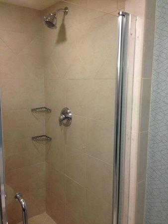 Hilton Garden Inn Atlanta South-McDonough : Huge separate shower!