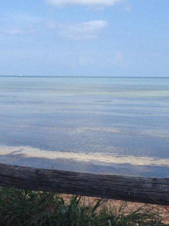 Long Key State Park: July 2014